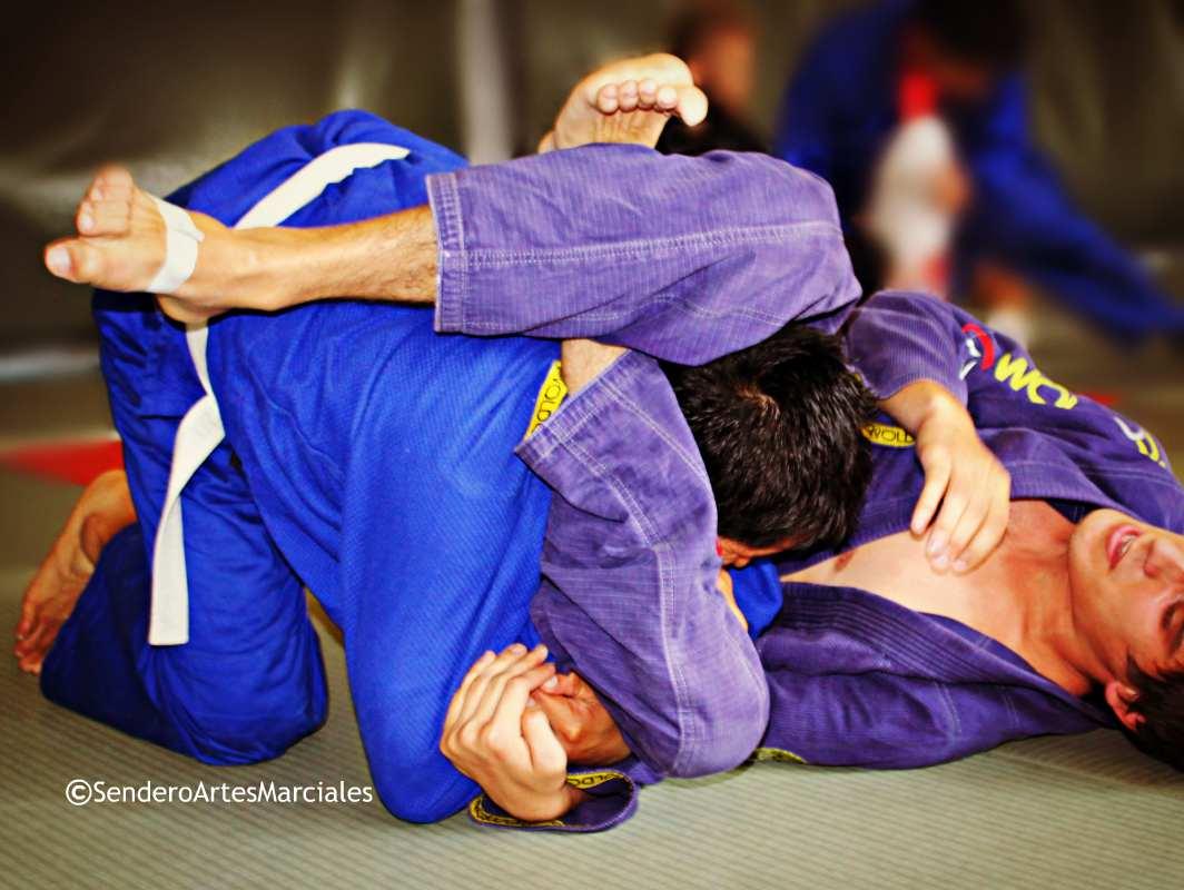 Los mejores exponentes de jiujitsu en el continente americano se darán cita en la zona vacacional de Cancún, Quintana Roo, sede que fue finalmente fue elegida como escenario del Campeonato Panamericano 2017 de la Unión Panamericana de Jiu Jitsu (UPJJ) y la Ju-Jitsu International Federation (JJIF).