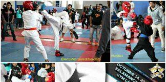 La práctica de las diferentes artes marciales serán beneficiadas con el IV Campeonato de Artes Marciales 'Gold Star' 2017, que se realizará en Salamanca, y al que acudirán competidores de diferentes estados del país.