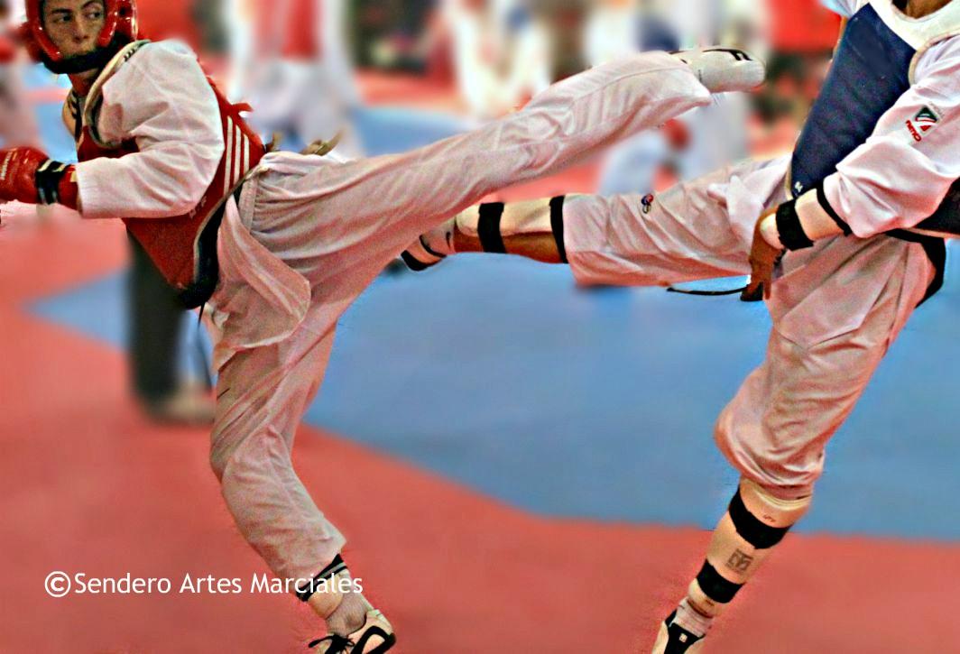 La Federación Mexicana de Taekwondo (FMTKD), informó que ya se tiene una lista con 12 de los 16 atletas que representarán al país en la Universiada Mundial en Taipéi, China, en agosto próximo.