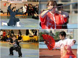 Ante la falta de apoyos por parte de autoridades del deporte, se llevará a cabo un torneo para reunir fondos de apoyo a la Selección de Wushu de la Ciudad de México, con el fin de que cumplan su compromiso en el Campeonato Panamericano en Costa Rica.
