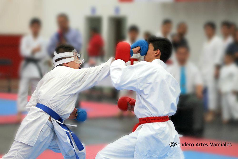 La Asociación de Karatedo de la Ciudad de México (AKCDMX) publicó el programa de actividades que se desarrollarán en el marco de la IV Copa Por el Bien del Karatedo en la CDMX y el primer torneo oficial y obligatorio para asistir a Campeonatos Nacionales de la Federación Mexicana de Karate y Artes Marciales Afines, A.C. (FEMEKA).
