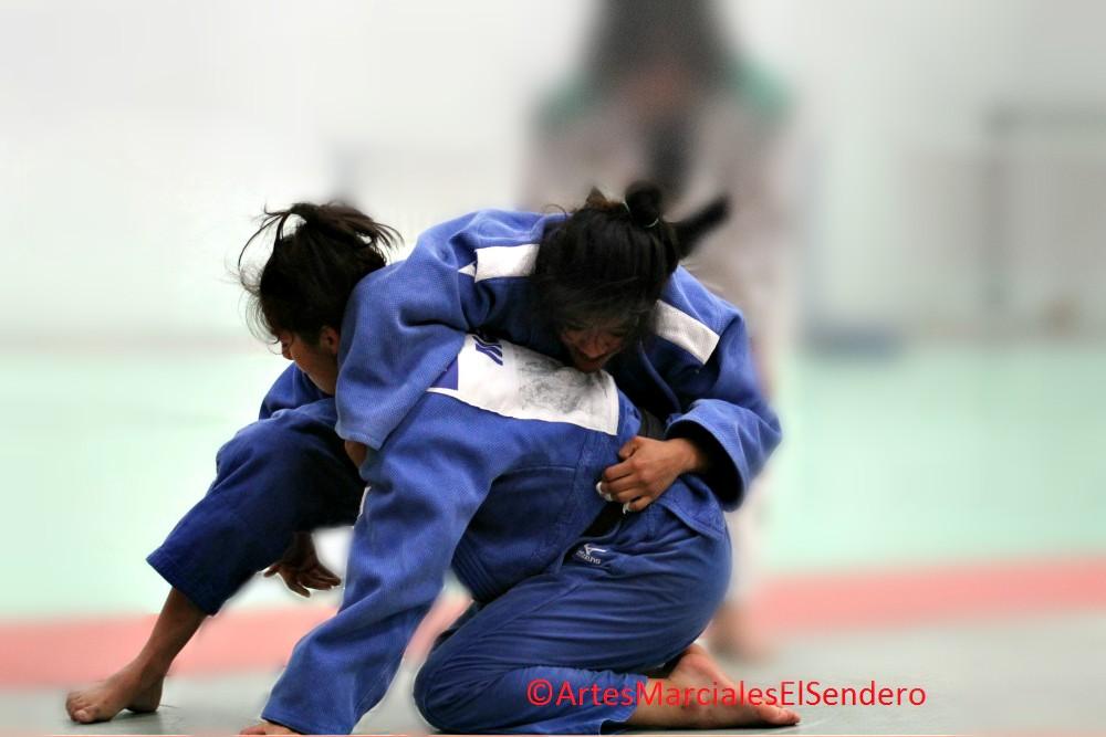 Solamente tres mujeres serán representantes de México en la disciplina de Judo en la Universiada Mundial 2017, la cual se realizará del 19 al 30 de agosto en Taipéi, China.