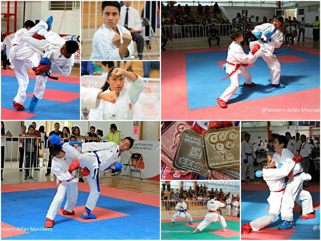 Grandes emociones y competencias de buen nivel, fueron parte de la 4ª Copa por el Bien del de Karatedo en la CDMX, la cual fue una prueba de fogueo preparatoria y de requisito para próximos eventos oficiales próximos.