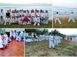 La organización Yuishinkan Goju Ryu Karate Do México llevó a cabo su Seminario de Verano en Playa 2017, el cual fue encabezado por ShihanToshiro Sasaki Fujino, representante de esta organización en América, mismo que sirvió de preparación para el próximo 15º Seminario Internacional Yuishinkan Goju Ryu Karate Do, en Osaka, Japón.