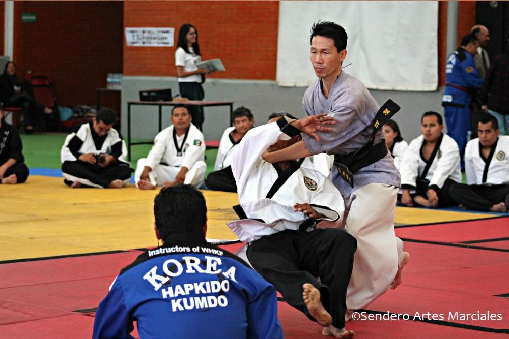 Todo está listo para que este fin de semana la defensa personal coreana del hapkido se haga presente en el Comité Olímpico México (COM), sede donde se llevará a cabo el Seminario Internacional con GM Jang Hee Chan, presidente de la World Hapkido Kumdo Federation (WHKF).