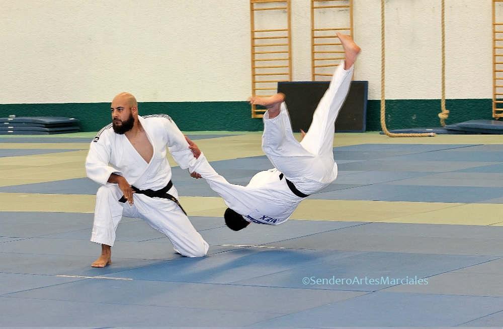 Autoridades del Instituto Politécnico Nacional (IPN) y medallistas panamericanos en el arte marcial y deporte olímpico de judo, estarán presentes en las Clínicas Técnicas de Nage No Kata que realizará en esta casa de estudios, la cual será de preparación para exámenes de Cinta Negra.