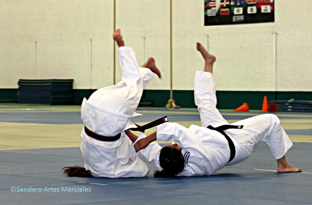 Integrantes de la Selección Mexicana de Judo se preparan para enfrentar a varios de los mejores competidores en el Torneo Clasificatorio de República Dominicana, el cual otorgará los boletos para los próximos Juegos Centroamericanos y del Caribe, Barranquilla Colombia 2018.